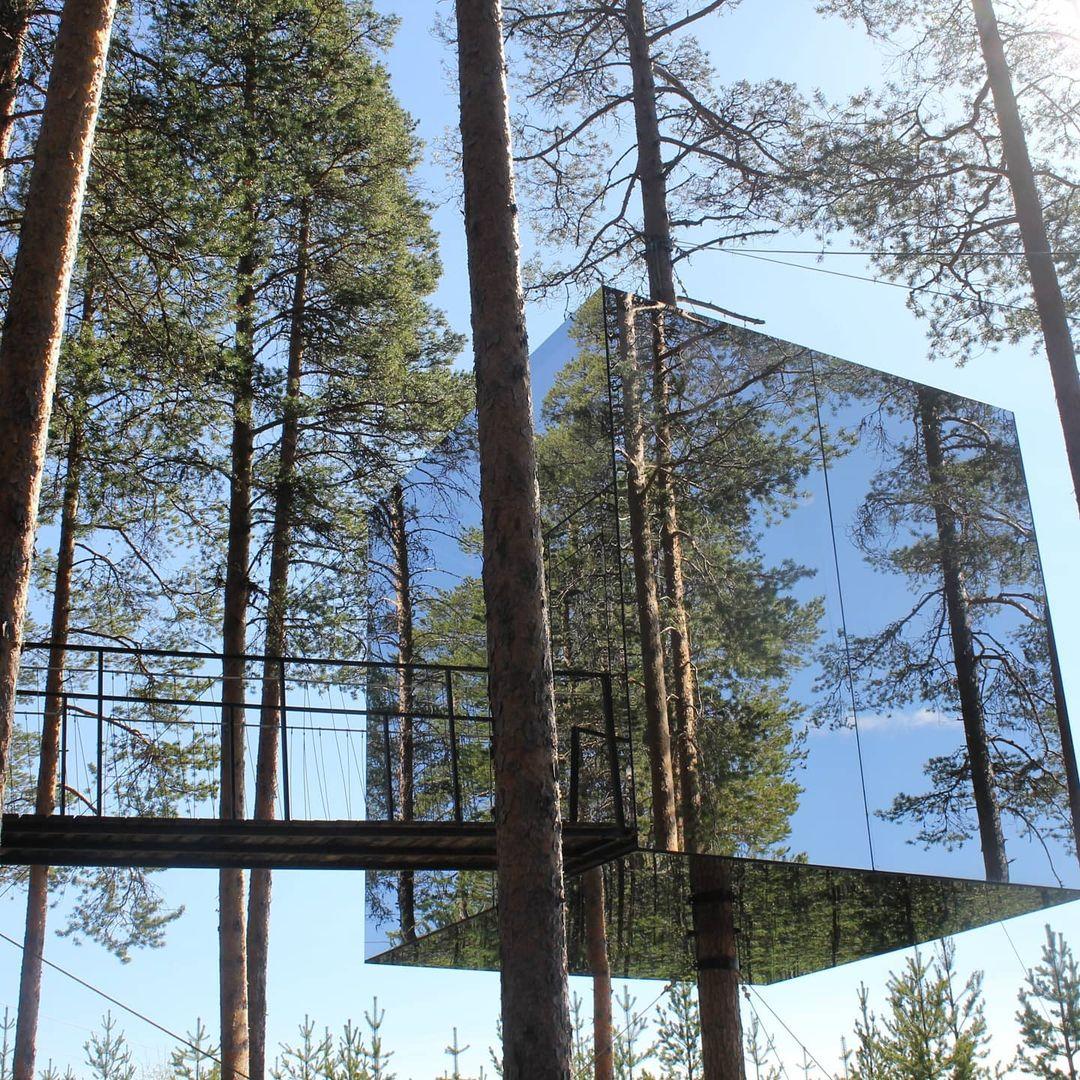 Tree hotel